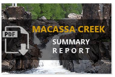 Macassa Creek Summary Report