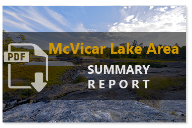 McVicar Lake Summary Report