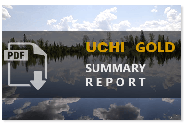 Uchi Summary Report